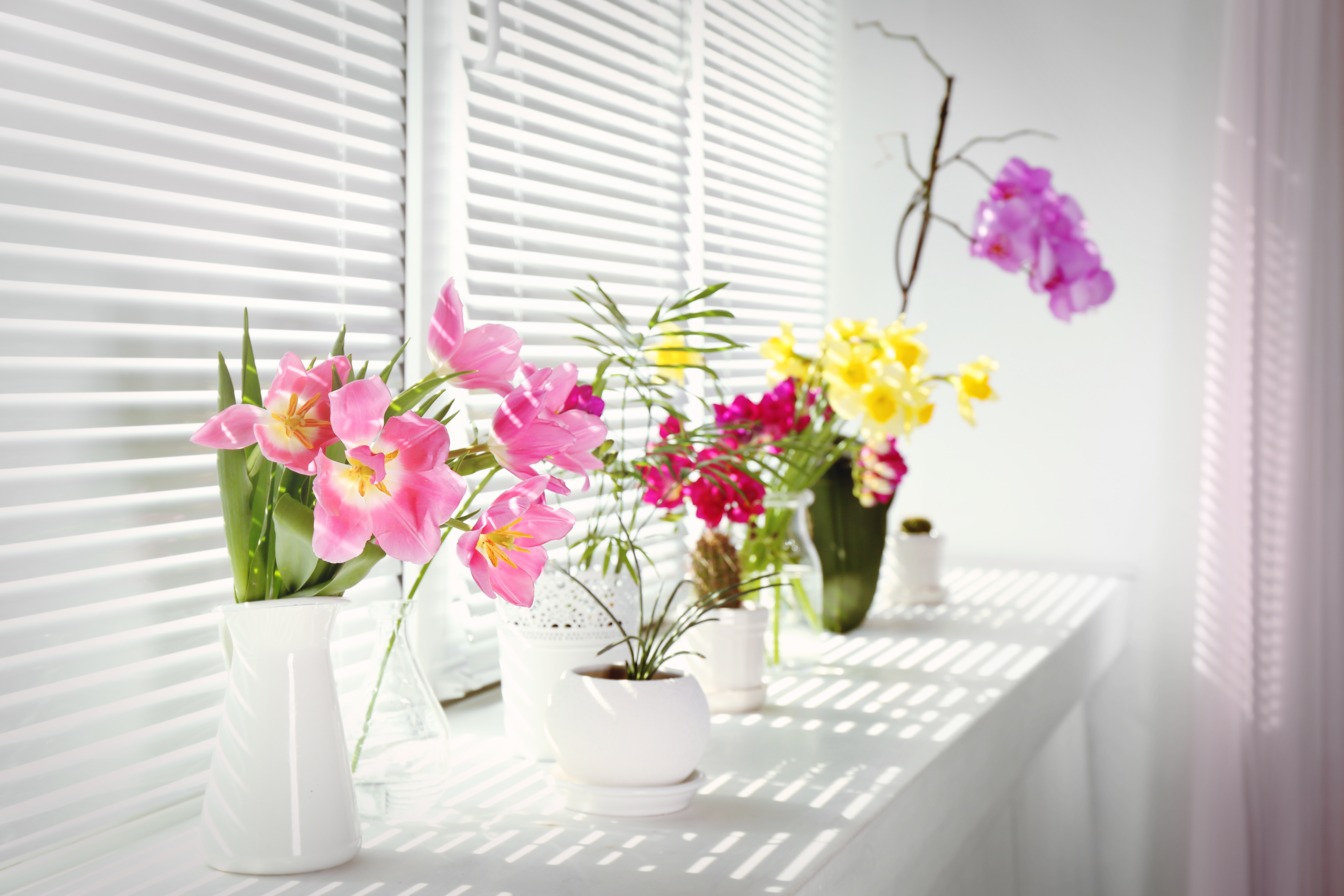 Tips to freshen and deodorize your home