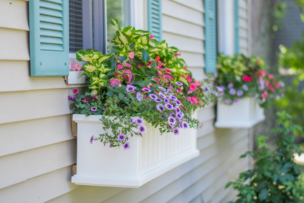 Affordable ways to improve your home's curb appeal
